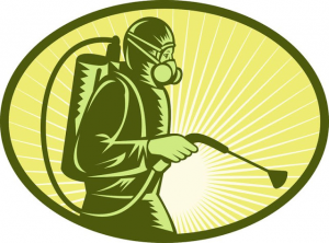 مكافحة الحشرات فى ام القيويين بالامارات من المستضيف العربى