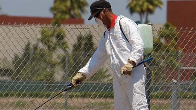 افضل خدمات الرش بالمبيدات فى السعودية للقضاء على الحشرات