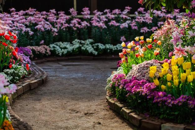 زراعة الحدائق المنزلية..
