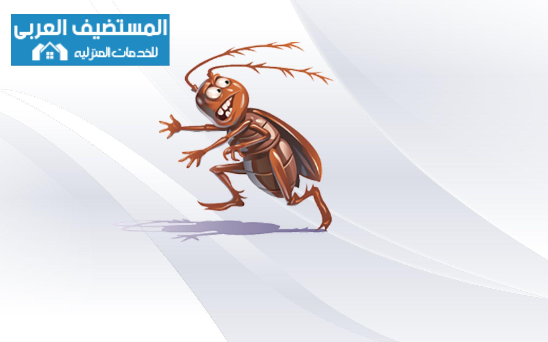 افضل 15 نصيحة لمكافحة الحشرات
